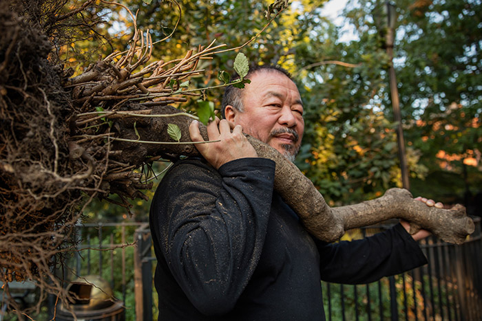 AI WEIWEI in The New York Times