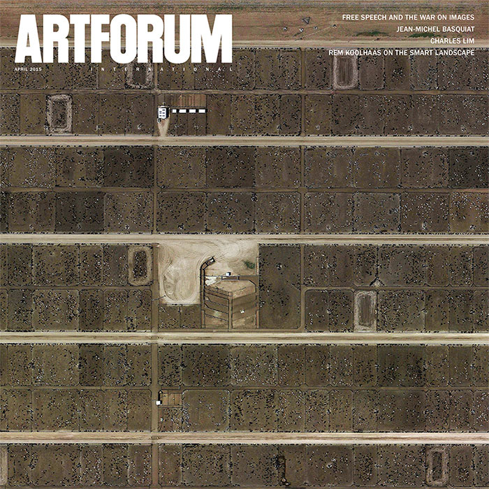 Ryan McNamara in Artforum