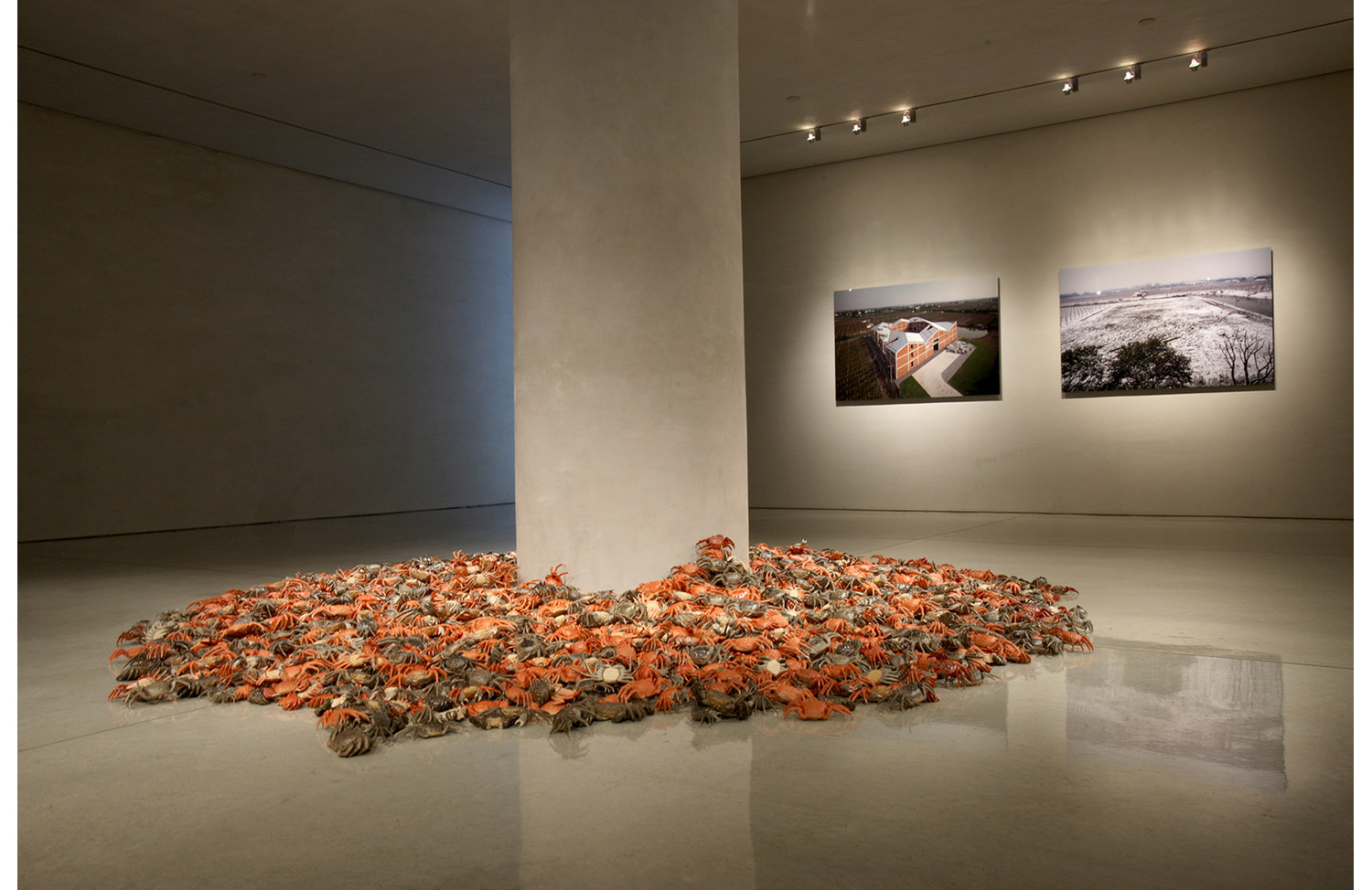 Ai Weiwei He Xie (River Crab) - View 2