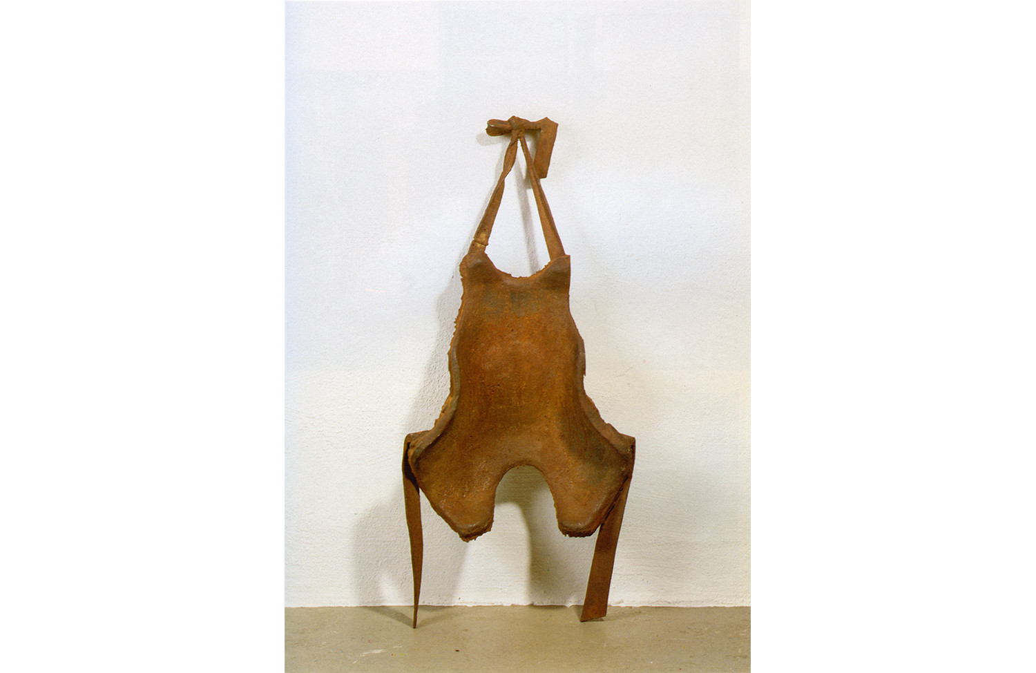 Backrest for a Fine-Limbed Person (Hare-Type) of the 20th Century A.D.