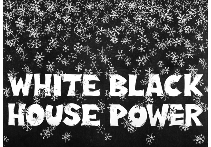 Aleksandra Mir White House Black Power